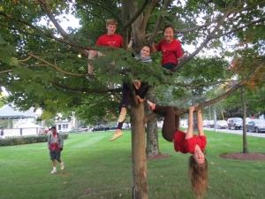 WA kids Hangin around - Sustainable Westford