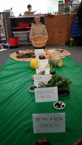 Healthy Kids Coalition Rainbow Vegetable Program