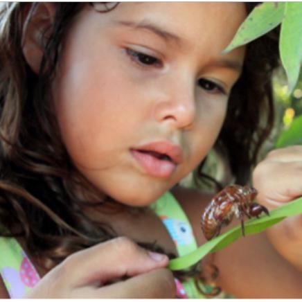 Eco-Film Series: Love Thy Nature